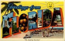 LLS001591 - Florida Large Letter State States Post Cards Postcards