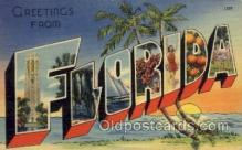 LLS001637 - Florida Large Letter State States Post Cards Postcards