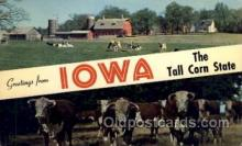 LLS001691 - Iowa Large Letter State States Post Cards Postcards