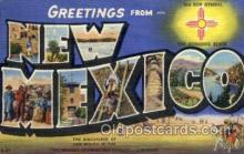 LLS001818 - New Mexico, USA Large Letter States Postcard Postcards