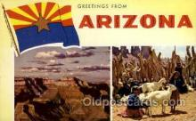 LLS001839 - Arizona, USA Large Letter States Postcard Postcards