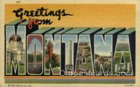 LLS001858 - Montana, USA Large Letter States Postcard Postcards