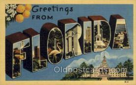 LLS001860 - Florida USA Large Letter States, Old Vintage Antique Postcard Post Cards