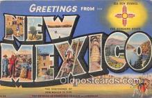 LLS100017 - New Mexico, USA Postcard Post Cards
