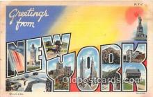 LLS100055 - New York, USA Postcard Post Cards