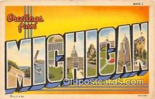 LLS100061 - Michigan, USA Postcard Post Cards