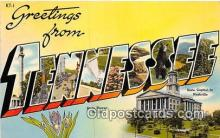 LLS100078 - Tennessee, USA Postcard Post Cards