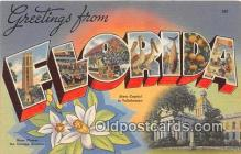 LLS100108 - Linen Florida, USA Postcard Post Cards