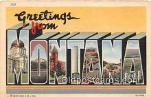 LLS100138 - Linen Montana, USA Postcard Post Cards