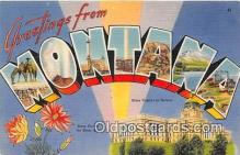 LLS100145 - Linen Montana, USA Postcard Post Cards