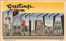 LLS100177 - Linen Montana, USA Postcard Post Cards
