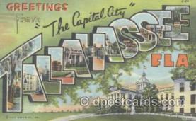 LLT001076 - Tallahassee, FLA USA Large Letter Town Postcard Postcards