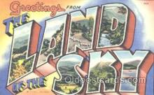 LLT001109 - The Land Of The Sky Large Letter Town Postcard Postcards