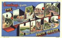 LLT001207 - Black Hills South Dakota, USA Large Letter Town Postcard Postcards