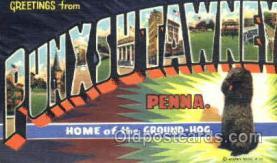 LLT001248 - Punxsutawney PA, USA Large Letter Town Postcard Postcards
