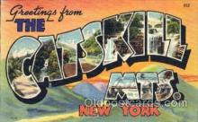 LLT001334 - Greetings From The Catskill Mountains, New York, USA Large Letter Town Towns Postcard Postcards