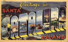 LLT001449 - Greetings From Santa Catalina Island, USA Large Letter Town Towns Postcard Postcards