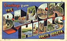 LLT001478 - Greetings From Black Hills, South Dakota, USA Large Letter Town Towns Postcard Postcards