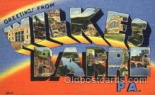 LLT001630 - Greetings From Wilkes Barre, PA. USA Large Letter Town Towns Postcard Postcards