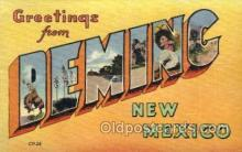 LLT001692 - Greetings From Deming, New Mexico Large Letter Town Towns Postcard Postcards