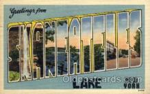 LLT1001187 - Skaneateles Lake, New York  Large Letter Town Towns Post Cards Postcards
