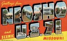 LLT1001232 - Neosho, Missouri Large Letter Town Towns Post Cards Postcards