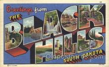 LLT100192 - Black Hills, South Dakota, Usa Large Letter Town, Towns, Postcard Postcards