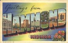 LLT100306 - Hammond, Indiana, Usa Large Letter Town, Towns, Postcard Postcards