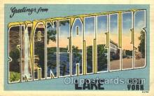 LLT100355 - Skaneateles Lake, New York, USA Large Letter Town, Towns, Postcard Postcards