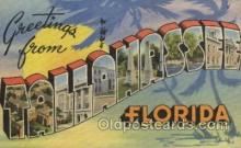 LLT100366 - Tallahassee, Florida, USA Large Letter Towns Postcard Postcards