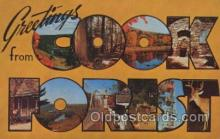 LLT100437 - Cook Forest, USA Large Letter Towns Postcard Postcards