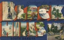 LLT100438 - Black Hills, South Dakota, USA Large Letter Towns Postcard Postcards