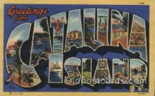 LLT100449 - Catalina Island, USA Large Letter Towns Postcard Postcards
