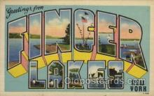 LLT100480 - Finger lakes, New York, USA Large Letter Towns Postcard Postcards