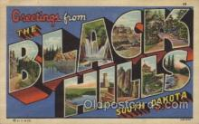 LLT100512 - Black Hills, South Dakota, USA Large Letter Towns Postcard Postcards