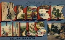 LLT100769 - Black Hills, South Dakota Large Letter Town Towns Post Cards Postcards
