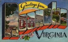 LLT100811 - Roanoke, Virginia Large Letter Town Towns Post Cards Postcards