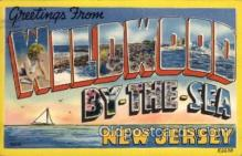 LLT100855 - Wildwood-By-The-Sea, New Jersey Large Letter Town Towns Post Cards Postcards