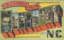 LLT200072 - Montreat, NC, USA Large Letter Town Postcard Post Card Old Vintage Antique