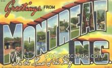 LLT200080 - Montreat, NC, USA Large Letter Town Postcard Post Card Old Vintage Antique