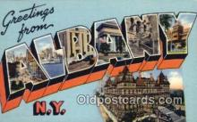 LLT200095 - Albany, NY, USA Large Letter Town Postcard Post Card Old Vintage Antique