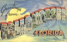 LLT200140 - Tallahassee, Florida, USA Large Letter Town Postcard Post Card Old Vintage Antique