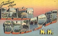 LLT200194 - Lake Sunapee, NH, USA Large Letter Town Postcard Post Card Old Vintage Antique