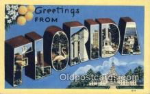 LLT200298 - Florida, USA Large Letter Town Postcard Post Card Old Vintage Antique
