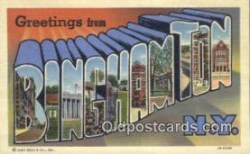 LLT200347 - Binghamton, NY, USA Large Letter Town Postcard Post Card Old Vintage Antique