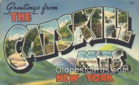 LLT200362 - Catskill Mts, New York, USA Large Letter Town Postcard Post Card Old Vintage Antique