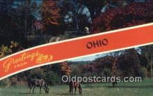 LLT200490 - Ohio, USA Large Letter Town Postcard Post Card Old Vintage Antique