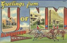 LLT200506 - Albuquerque, New Mexico, USA Large Letter Town Postcard Post Card Old Vintage Antique