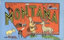 LLT200545 - Montana, USA Large Letter Town Postcard Post Card Old Vintage Antique