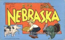 LLT200546 - Nebraska, USA Large Letter Town Postcard Post Card Old Vintage Antique